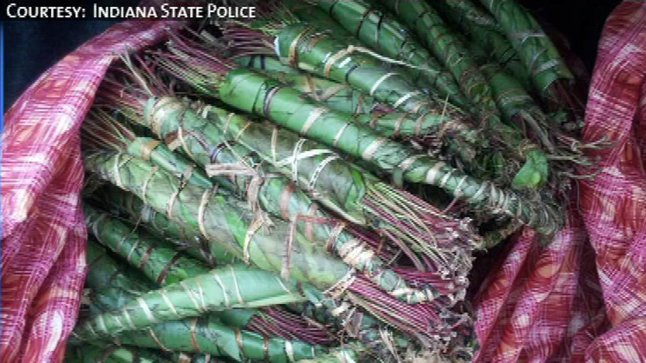 Khat found during traffic stop