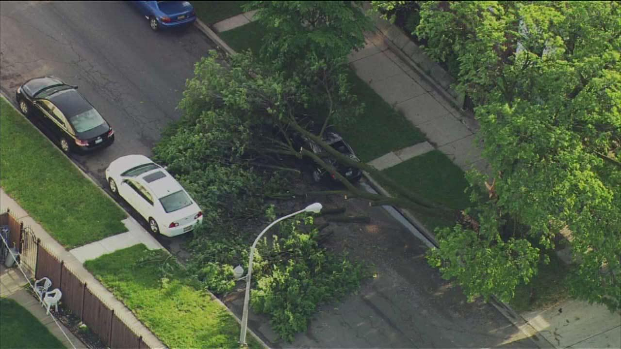 Tree falls on car, 27th and Lamon, ChicagoChopper 7 HD