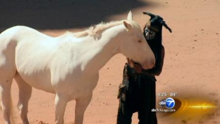 Phoebe is an all-white thoroughbred cast as Silver. She was discovered two years ago at the Valley View Acres horse farm in Woodstock as plans for the film got underway.