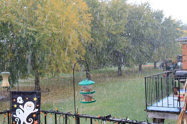 Snow in Mendota, shared with ABC7 by Nicole Chasteen