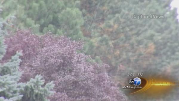 First snowflakes fall in parts of Chicago
