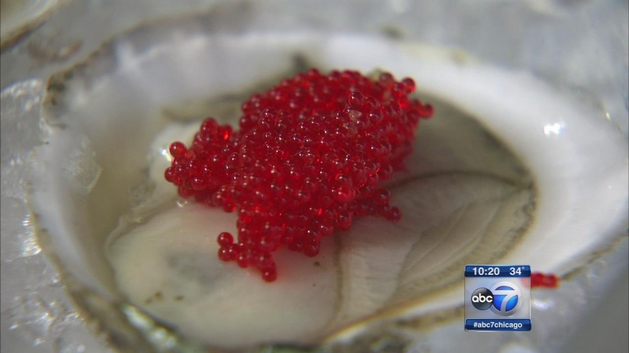 Dirk 39 s fish caviar adds festive flair in lincoln park for Dirk s fish gourmet shop