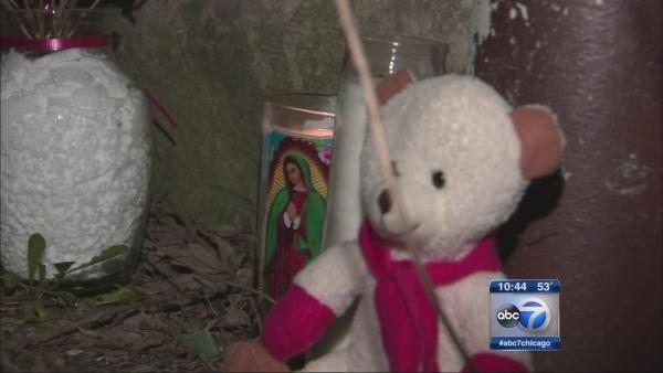 Baby boy found dead in Logan Square gangway