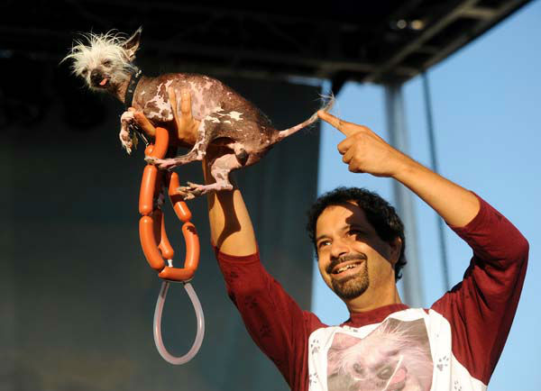 Dane Andrew campaigns Rascal in the 2011 World&#39;s Ugliest Dog Contest on Friday, June 24, 2011, in Petaluma, Calif. Rascal, an African Sand Dog who has won 14 ugly dog contests according to Andrew, did not take home top prize in this year&#39;s competition at the Sonoma-Marin Fair. &#40;AP Photo&#47;Noah Berger&#41; <span class=meta>(AP Photo&#47; Noah Berger)</span>