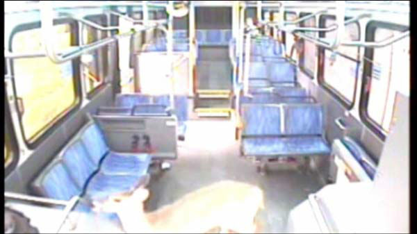 Eventually it came back up to the front of the bus. <span class=meta>(WLS Photo)</span>