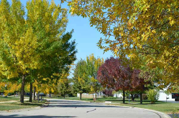 "<div class=""meta image-caption""><div class=""origin-logo origin-image ""><span></span></div><span class=""caption-text"">Weslake neighborhood in Romeoville. ABC7 Chicago viewers are sending in their beautiful fall photos! E-mail yours to Useeit@abc.com or go to seeit.abc7chicago.com </span></div>"