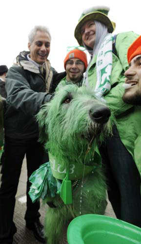 Chicago Mayor Rahm Emanuel left, poses for a photo with &#34;Shamrock&#34; the green dyed Irish Wolfhound and from left, Clancy Shanahan, Tony Shanahan and Cavan Shanahan before the St. Patrick&#39;s Day parade in Chicago, Saturday, March, 16, 2013. &#40;AP Photo&#47;Paul Beaty&#41; <span class=meta>(AP Photo&#47; PAUL BEATY)</span>