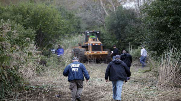 "<div class=""meta ""><span class=""caption-text "">Chicago Police officers enter an area where authorities are busy chopping down 6-to-8-foot tall marijuana plants that they found growing on a chunk of land the size of two football fields on the city's South Side Wednesday, Oct. 3, 2012.  Officers on routine patrol in a police helicopter spotted the crop Tuesday under a canopy of trees about 3 miles from their hangar. (AP Photo/Teresa Crawford)</span></div>"