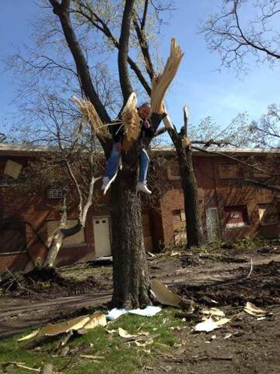 Actor stuck in a tree for Chicago tornado drill.    <span class=meta>(Photo&#47;@donofrioABC7)</span>