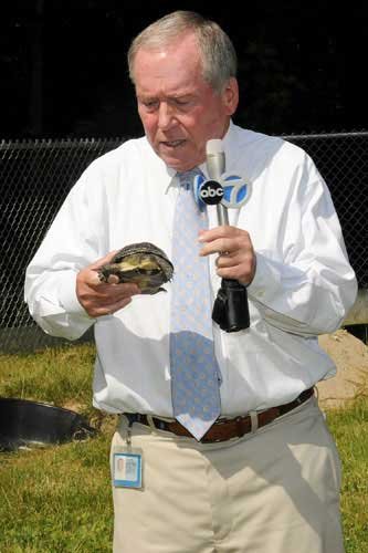 "<div class=""meta ""><span class=""caption-text "">ABC7's Frank Mathie holds a Blanding's turtle at Brookfield Zoo on July 16, 2013.  (Jim Schulz/Chicago Zoological Society)</span></div>"