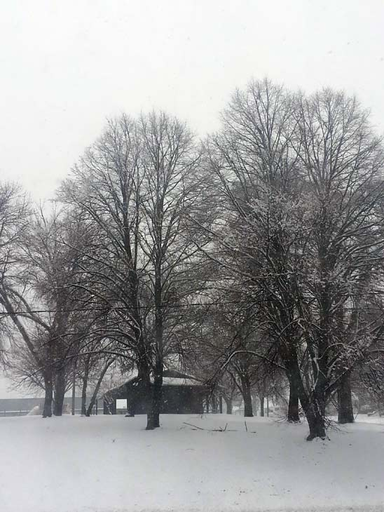 Submitted by an ABC 7 viewer from LaSalle. Send your snow photos to USeeIt@abc7chicago.com