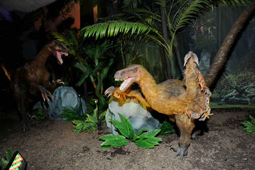 "<div class=""meta image-caption""><div class=""origin-logo origin-image ""><span></span></div><span class=""caption-text"">Throughout the exhibit, graphics about each species and dinosaurs in general will teach dino enthusiasts the similarities between dinosaurs and today?s animals, as well as facts on dinosaur habitats, adaptations, and other factors that allow creatures to thrive no matter when or where they live.  (Jim Schulz/Chicago Zoological Society)</span></div>"