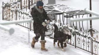 A woman walks with a dog as temperatures hovered around 8 degrees Wednesday Dec. 4, 2013, in Denver. A wintry storm pushing through the Rockies and Midwest is bringing bitterly cold temperatures and treacherous driving conditions.