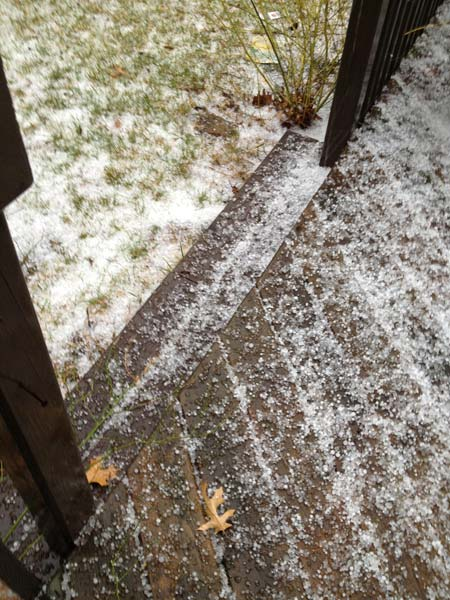 Hail photograph by viewer from Cary, Illinois. Photos from ABC7 viewers submitted to useeit@abc7chicago.com.