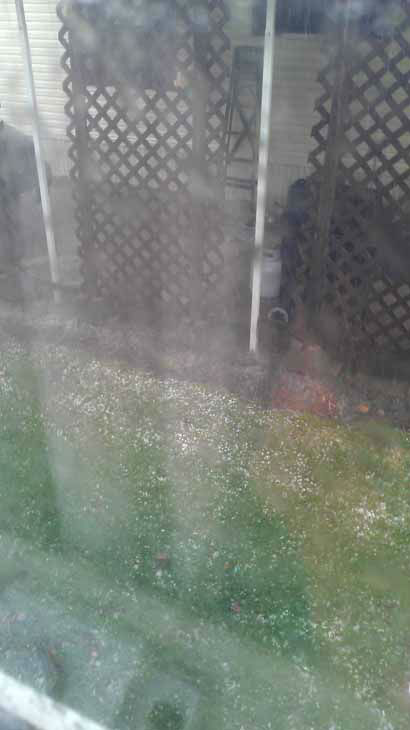 Hail photograph by viewer from DeKalb, Illinois. Photos from ABC7 viewers submitted to useeit@abc7chicago.com.