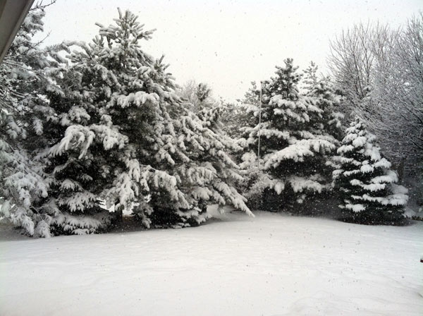 Submitted by an ABC 7 viewer from Mokena. Send your snow photos to USeeIt@abc7chicago.com
