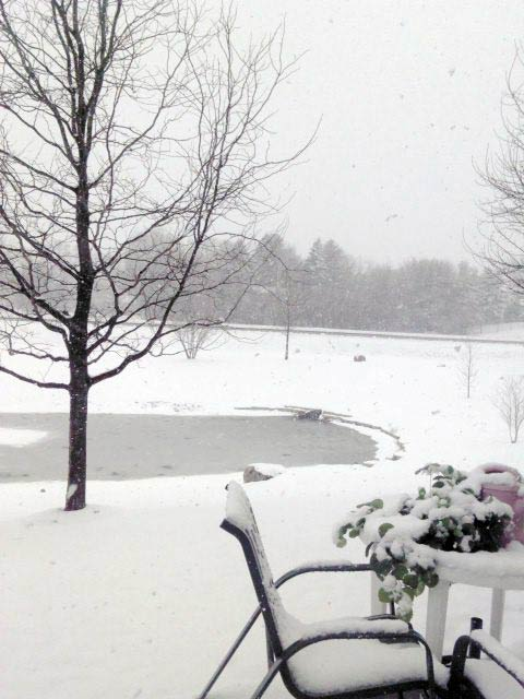 Submitted by an ABC 7 viewer from Naperville. Send your snow photos to USeeIt@abc7chicago.com