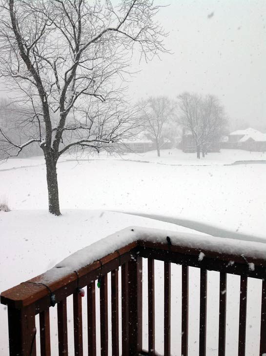 Submitted by an ABC 7 viewer from Palos Heights. Send your snow photos to USeeIt@abc7chicago.com