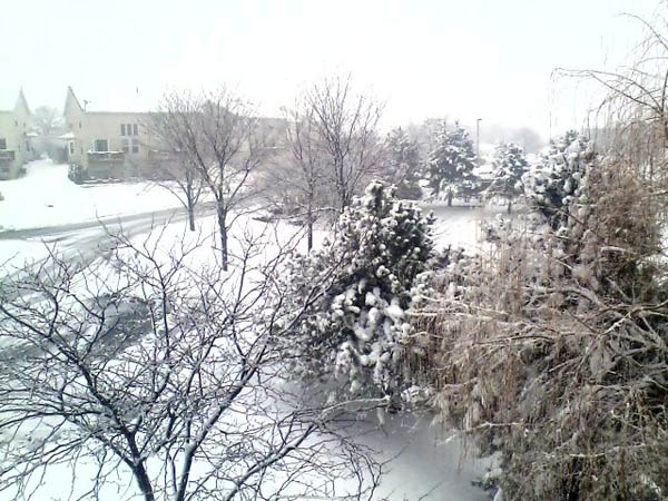 Submitted by an ABC 7 viewer from Romeoville. Send your snow photos to USeeIt@abc7chicago.com