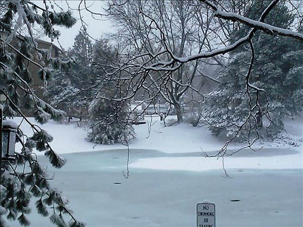 Picture from Roselle, Illinois. Send your snow photos to USeeIt@abc7chicago.com