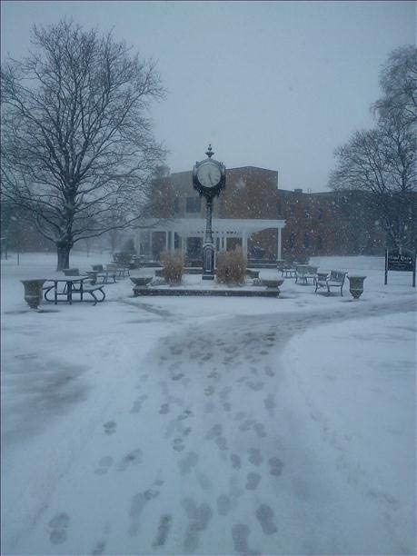 Lewis University in Romeoville. Send your snow photos to USeeIt@abc7chicago.com