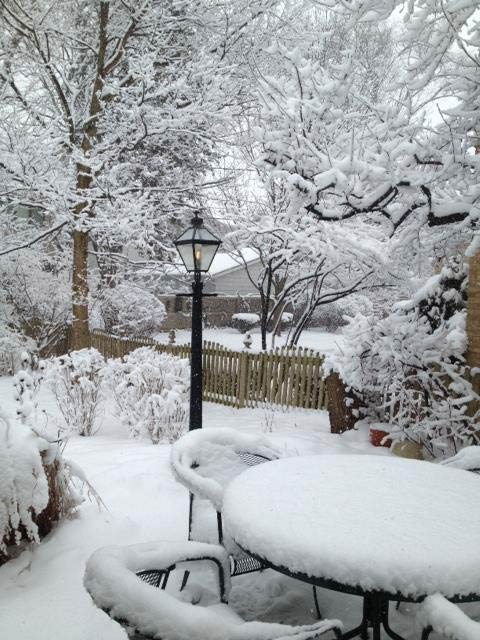 Submitted by an ABC 7 viewer from Western Springs. Send your snow photos to USeeIt@abc7chicago.com
