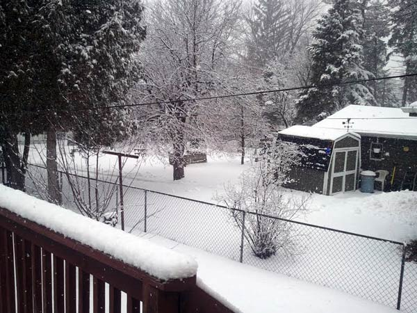 Submitted by an ABC 7 viewer from Westmont. Send your snow photos to USeeIt@abc7chicago.com