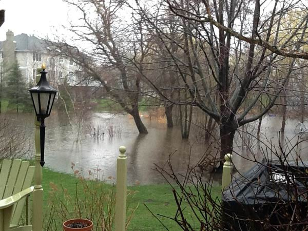 Viewer photo: A flooded backyard in Palatine.