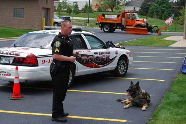 Maxx is the top dog at the Wauconda Police Department. Actually, the 9-year-old German shepherd is the only dog in their canine unit -- and he&#39;s in high demand. <span class=meta>(Wauconda Police Department)</span>