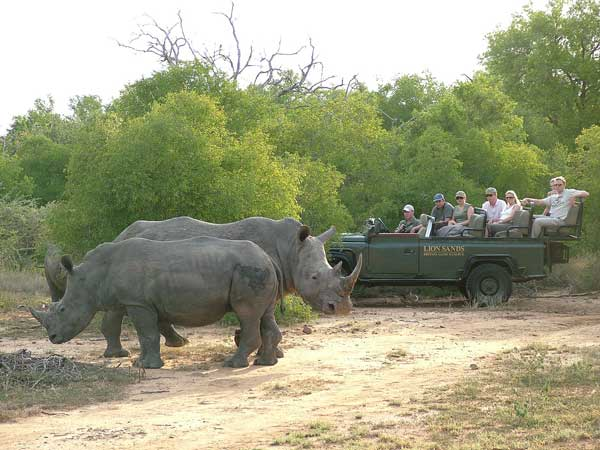 Luxury Safar in South Africa: Roundtrip airfare from Chicago to South Africa and 8 days, 7 nights deluxe accommodations.