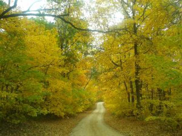 "<div class=""meta ""><span class=""caption-text "">Galena. ABC7 Chicago viewers are sending in their beautiful fall photos! E-mail yours to Useeit@abc7chicago.com or go to seeit.abc7chicago.com</span></div>"