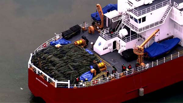 "<div class=""meta ""><span class=""caption-text "">The Christmas Tree Ship arrived in Chicago on December 6, 2013. The Coast Guard Cutter Mackinaw left its port in Cheboygan last month and sailed Lake Michigan to arrive at Navy Pier. (WLS Photo)</span></div>"