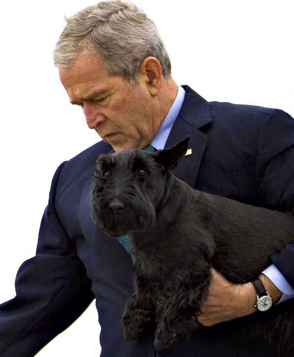 Carrying his dog Barney, President Bush steps down from Air Force One as he arrives in Waco, Texas, Friday, Aug. 15, 2008. The president will spend some vacation time at his ranch in nearby Crawford. &#40;AP Photo&#47;J. Scott Applewhite&#41; <span class=meta>(AP Photo&#47; J. Scott Applewhite)</span>