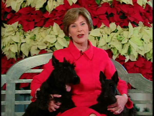 This video image provided by the White House shows first lady Laura Bush with Barney and Miss Beazley appearing in the &#34;Barney Cam&#34; holiday doggie video. &#40;AP Photo&#47;White House&#41; <span class=meta>(AP Photo&#47; Anonymous)</span>