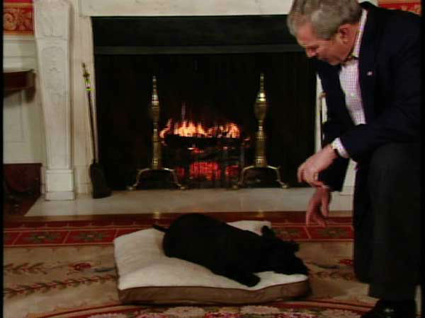 This video image provided by the White House shows President George W. Bush talking to Basrney in the &#34;Barney Cam&#34; holiday doggie video. &#40;AP Photo&#47;White House&#41; <span class=meta>(AP Photo&#47; Anonymous)</span>