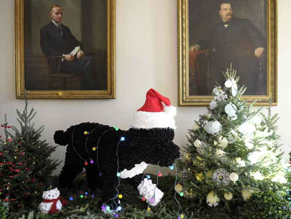 "<div class=""meta ""><span class=""caption-text "">A life-sized replica of the Obama family dog, Bo, a Portuguese Water Dog, is the centerpiece of the East Garden Room of the White House in Washington, Wednesday, Nov. 28, 2012. The theme for the White House Christmas 2012 is Joy to All. (AP Photo/Susan Walsh) (AP Photo/ Susan Walsh)</span></div>"