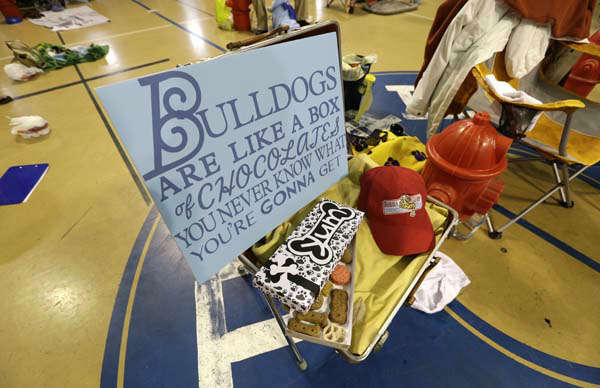 A sign sits among competitors during the 34th annual Drake Relays Beautiful Bulldog Contest, Monday, April 22, 2013, in Des Moines, Iowa. The pageant kicks off the Drake Relays festivities at Drake University where a bulldog is the mascot. &#40;AP Photo&#47;Charlie Neibergall&#41; <span class=meta>(AP Photo&#47; Charlie Neibergall)</span>