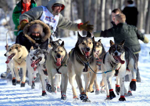 "<div class=""meta image-caption""><div class=""origin-logo origin-image ""><span></span></div><span class=""caption-text"">Cim Smith greets fans during the ceremonial start of the Iditarod Trail Sled Dog Race Saturday, March 2, 2013, in Anchorage, Alaska. The competitive portion of the 1,000-mile race is scheduled to begin Sunday in Willow, Alaska. (AP Photo/Dan Joling) (AP Photo/ Dan Joling)</span></div>"