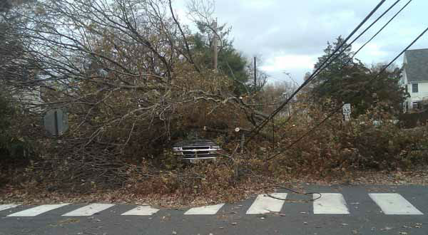 "<div class=""meta ""><span class=""caption-text "">A truck sits covered with tree debris in Fairfield, Conn., Tuesday, Oct. 30, 2012, after it was toppled overnight by high winds. Sandy, the storm that made landfall Monday, caused multiple fatalities, halted mass transit and cut power to more than 6 million homes and businesses in the Northeast.  (AP Photo/John Christoffersen) (AP Photo/ John Christoffersen)</span></div>"