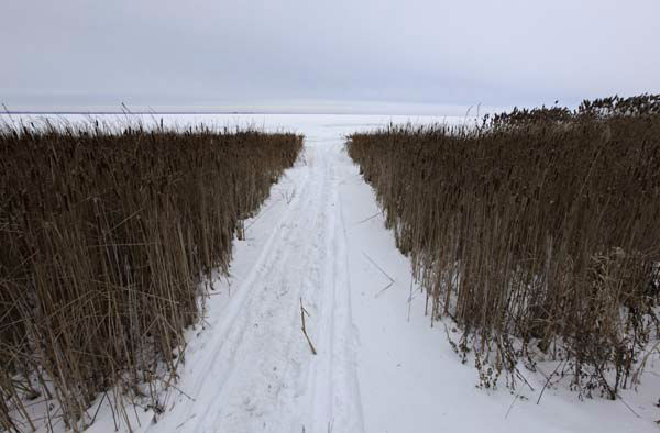 "<div class=""meta image-caption""><div class=""origin-logo origin-image ""><span></span></div><span class=""caption-text"">Green Bay is seen frozen through a path between grassy vegetation at the Cofrin Memorial Arboretum on the University of Wisconsin Green Bay campus Sunday, Jan. 5, 2014, in Green Bay. Temperatures not seen in years are likely to set records in the coming days across the U.S. Midwest, Northeast and South, creating dangerous travel conditions and prompting church and school closures.(AP Photo/Kiichiro Sato) (Photo/Kiichiro Sato)</span></div>"