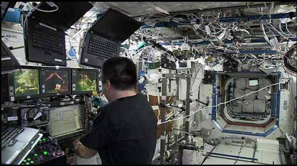 "<div class=""meta image-caption""><div class=""origin-logo origin-image ""><span></span></div><span class=""caption-text"">An astronaut working inside, Japan's Koichi Wakata, gingerly steered the arm and its precious load.  (WLS Photo)</span></div>"