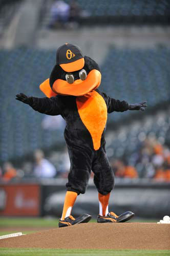 8.The Bird, Baltimore Orioles: The Baltimore Orioles bird entertains the crowd before game against the Seattle Mariners Tuesday, May 11, 2010 in Baltimore.&#40;AP Photo&#47;Gail Burton&#41; <span class=meta>(AP Photo&#47; Gail Burton)</span>