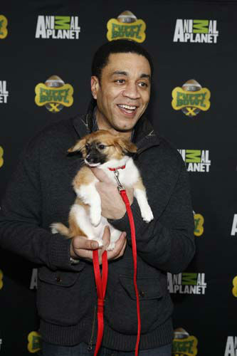 IMAGE DISTRIBUTED FOR DISCOVERY COMMUNICATIONS - Actor Harry Lennix attends the  Puppy Bowl X at the Discovery Times Square Experience in New York on Tuesday, Jan. 28, 2014. &#40;Mark Von Holden&#47;AP Images for Discovery Communications&#41; <span class=meta>(WLS Photo&#47; Mark Von Holden)</span>