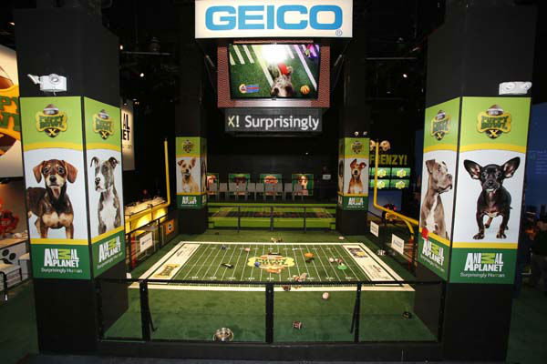 IMAGE DISTRIBUTED FOR DISCOVERY COMMUNICATIONS -  Atmosphere at the Puppy Bowl X at the Discovery Times Square Experience in New York on Tuesday Jan. 28, 2014. &#40;Mark Von Holden&#47;AP Images for Discovery Communications&#41; <span class=meta>(WLS Photo&#47; Mark Von Holden)</span>