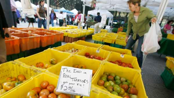 Shoppers pick through tomatoes at the Chicago Farmers market in Federal Plaza. (AP)