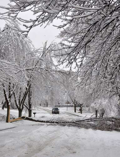 An SUV has to turn around when confronted by a large branch which fell across a residential street in Sioux Falls, S.D. on Thursday, April 11, 2013. An ice storm followed by more than 6 inches of heavy, wet snow downed trees and power lines across the city. &#40;AP Photo&#47;Dirk Lammers&#41; <span class=meta>(AP Photo&#47; Dirk Lammers)</span>