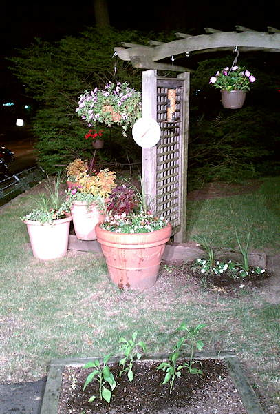 "<div class=""meta ""><span class=""caption-text "">A night time shot of the 6abc garden along City Avenue in Philadelphia. You can see the plants just finished getting a good watering by Adam Joseph and weather producer Paul Trombello.</span></div>"