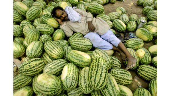 A roadside watermelon vendor takes a nap in Allahabad, India, Thursday, May 1, 2008.  (AP Photo)