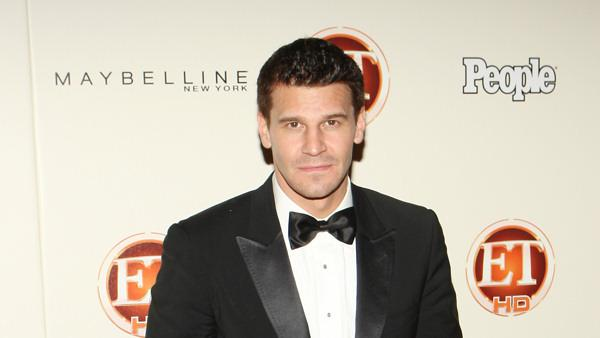Actor David Boreanaz