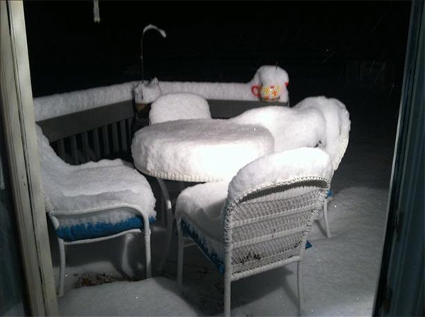 January 29, 2014: An Action News viewer captured this scene of a backyard in Galloway, N.J.